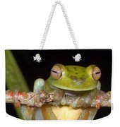 Canal Zone Tree Frog Weekender Tote Bag