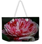 Candy Cane Rose Weekender Tote Bag