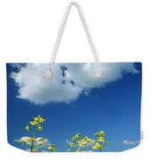 Canola Flowers, Marquette, Manitoba Weekender Tote Bag