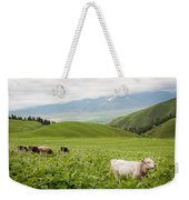 Canyon Chon-kemin  Weekender Tote Bag