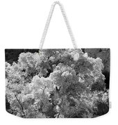 Canyon Treasure Weekender Tote Bag
