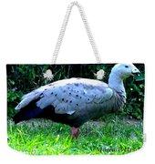 Cape Barren Goose Weekender Tote Bag