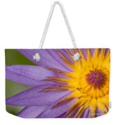 Cape Blue Waterlily Nymphaea Capensis Weekender Tote Bag