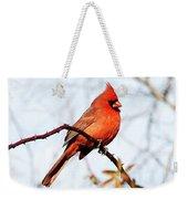 Cardinal 1 Weekender Tote Bag