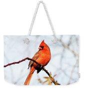Cardinal 2 Weekender Tote Bag