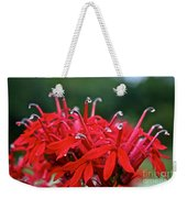 Cardinal Flower Close Up Weekender Tote Bag