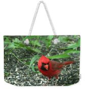 Cardinal In Springtime Weekender Tote Bag