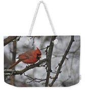 Cardinal Male 3666 Weekender Tote Bag