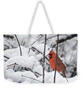 Cardinal Male 3669 Weekender Tote Bag