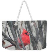 Cardinal With Fluffed Feathers Weekender Tote Bag