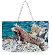 Caribbean Iguana Weekender Tote Bag