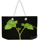 Castor Bean Plant Weekender Tote Bag