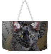 Cat Art Of Relaxing Weekender Tote Bag