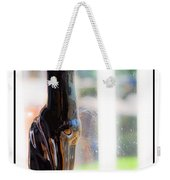 Cat At The Window Weekender Tote Bag
