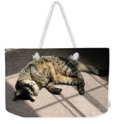Cat Got Your Tongue Weekender Tote Bag