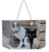 Cat Guardians Weekender Tote Bag