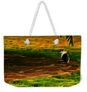 Cat In A Strange Place Weekender Tote Bag