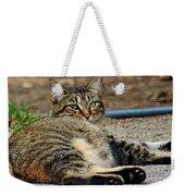 Cat Nap Interuption Weekender Tote Bag
