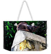 Cat On Medieval Wall Weekender Tote Bag