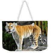 Cat On The Rocks Weekender Tote Bag