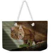 Cat Out On A Limb Weekender Tote Bag