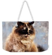 Cat Portrait Of A Cat Weekender Tote Bag