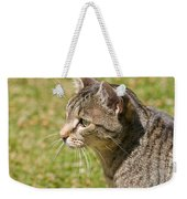 Cat Portrait On A Green Lawn Weekender Tote Bag