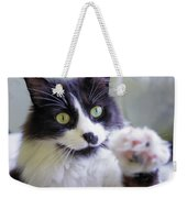 Cat Reaches For Camera Weekender Tote Bag