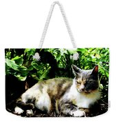 Cat Relaxing In Garden Weekender Tote Bag
