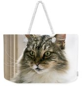 Cats Are Magical Weekender Tote Bag