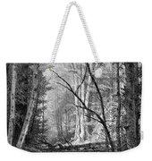 Catskill Brook, 1873 Weekender Tote Bag