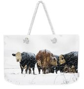 Cattle In A Snowstorm In Southwest Michigan Weekender Tote Bag