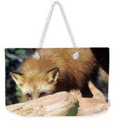 Cautious Red Fox Weekender Tote Bag