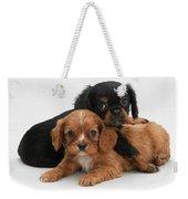Cavalier King Charles Spaniel Puppies Weekender Tote Bag