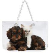 Cavapoo Pup And Blue-point Kitten Weekender Tote Bag
