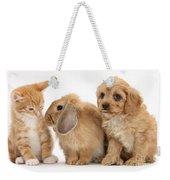 Cavapoo Pup, Rabbit And Ginger Kitten Weekender Tote Bag