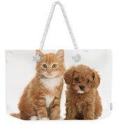 Cavapoo Puppy And Kitten Weekender Tote Bag