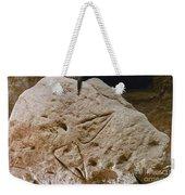 Cave Art: Vulva Weekender Tote Bag