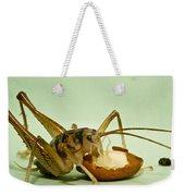 Cave Cricket Feeding On Almond 8 Weekender Tote Bag