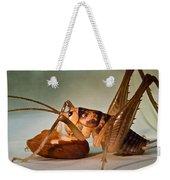 Cave Cricket Feeding On Almond Weekender Tote Bag