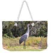 Central Florida Sandhill Crane With Oaks Weekender Tote Bag