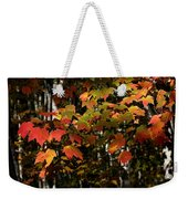 Changing Of The Colors Weekender Tote Bag