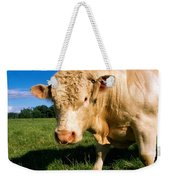 Charolais Bull, Ireland Weekender Tote Bag