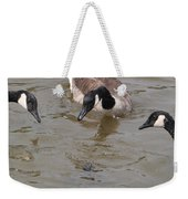 Check Out The Turtle Weekender Tote Bag