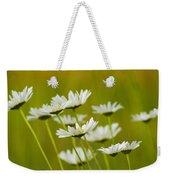 Cheerful Daisy Wildflowers Blowing In The Wind Weekender Tote Bag