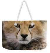Cheetah Acinonyx Jubatus Ten To Twelve Weekender Tote Bag