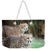 Cheetah Brothers Weekender Tote Bag