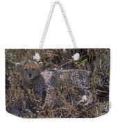 Cheetah Kitten Weekender Tote Bag