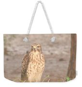 Chicken Hawk 1 Weekender Tote Bag