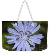 Chicory For Three Weekender Tote Bag